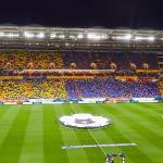 Стадионы РПЛ: «Ростов Арена»