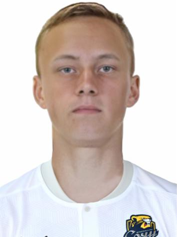 Федоренко Денис Сергеевич
